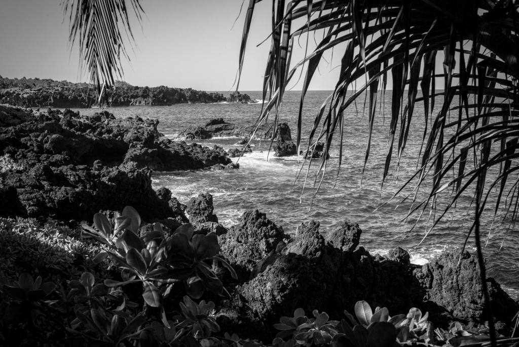 Blog_Maui_13